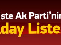 İşte AK Parti'nin 1 Kasım aday listesi