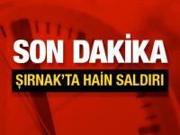 Şırnak'ın İdil ilçesinde hain saldırı!