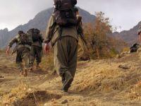PKK'dan 'evleri ve okulları yakın' talimatı