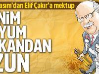 Molla Kasım'dan Elif Çakır'a Mektup