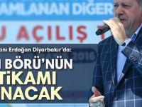 Erdoğan: Yasin Börü'nün intikamı alınacak