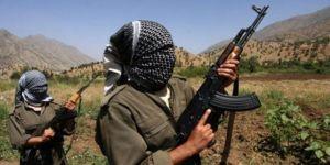 PKK, Gültan Kışanak ve Selahattin Demirtaş'ı öldürebilir