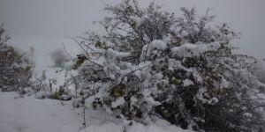 4 İlimizde Okullara Kar Tatili - Yarın okullar tatil mi