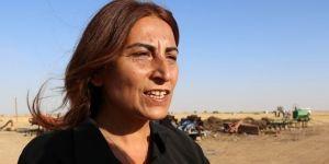 HDP Genel Başkan Yardımcısı Aysel Tuğluk Tutuklandı