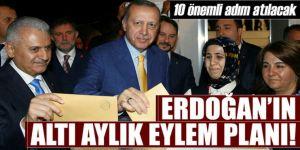 İşte Erdoğan'ın 6 aylık eylem planı