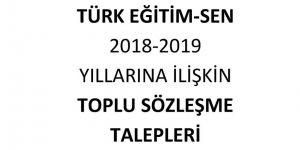 Türk Eğitim-Sen Toplu Sözleşme Talepleri - MEB - YÖK - Kredi Yurtlar Kurumu