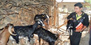 Adanalı çoban Polat Ersin'in TEOG zaferi