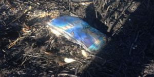 Mogan Gölü yangınında FETÖ izi