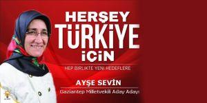 Ayşe Sevin, Gaziantep Milletvekili Aday Adayı Oldu
