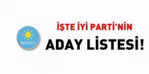 İşte İYİ Parti'nin aday listesi!