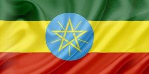 FETÖ'cüler Etiyopya'daki vakıf mallarını üstüne geçirdi