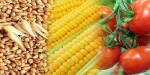 Çok sayıda gıda ürününde ihtalata sıfır vergi