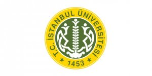 İstanbul Üniversitesi Öğretim Elemanı Alım İlanı