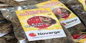 Novarge, Sokak Hayvanlarına Duyarsız Kalmadı