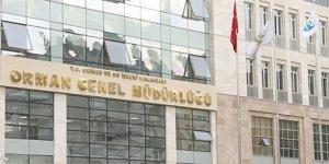 OGM'den dikilen 11 milyon fidan kurudu açıklaması