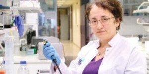 Koronavirüsten bir iyi, bir kötü haber