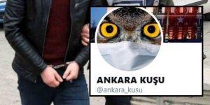 Bir Yalancı ve Mum Hikayesi: Ankara Kuşu