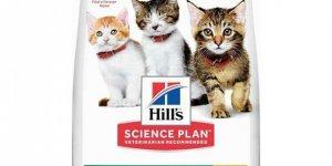 İndirimli Pet Shop Ürünleri İçin Güvenilir Bir Web Sitesi