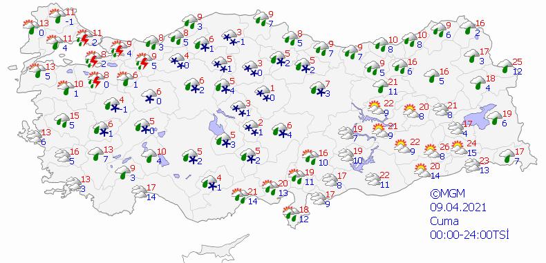 haritatahmingun2-003.png
